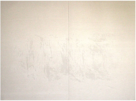<b>Landschaft 7</b><br />2009<br />Sepiatusche und Acryllack auf Leinen<br />170 cm x 237 cm