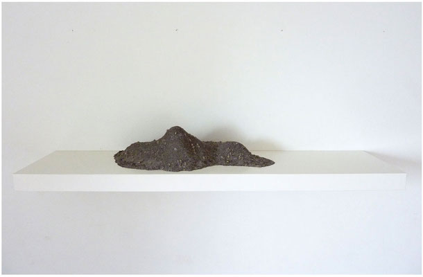 <b>Palermo</b><br />2011<br />Papiermaché, PVA, Kleber, Blumenerde, Sand, Kieselsteine, Wandregal<br />110 cm x 26 cm x 19 cm