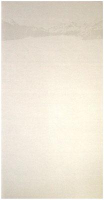 <b>Horizont</b><br />2008<br />Sepiatusche und Acryllack auf Leinen<br />250 cm x 120 cm