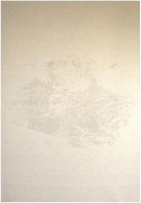 <b>Landschaft 8</b><br />2009<br />Sepiatusche und Acryllack auf Leinen<br />200 cm x 140 cm