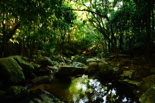 Wasserfall Feiticeira auf Ilha Grande