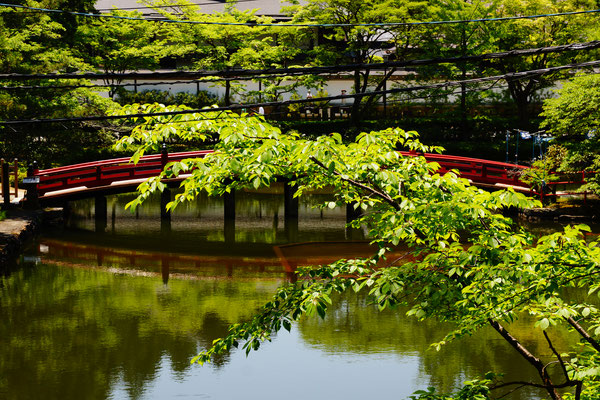 Typischer Japanischer Garten