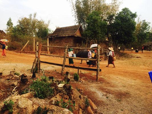 Pa'O Volk im Shan State - Myanmar