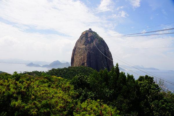 Ausblick auf den Pan de Azzucar in Rio den Janeiro