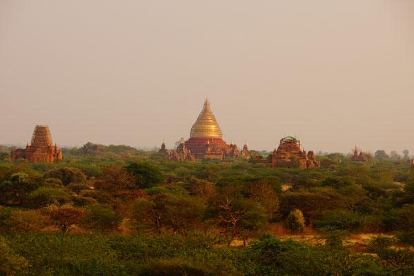 Tausende von Pagoden in Bagan