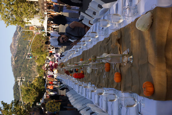Harvest Table in Calistoga