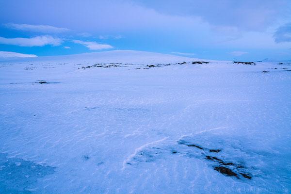Icy Kollóttadyngja