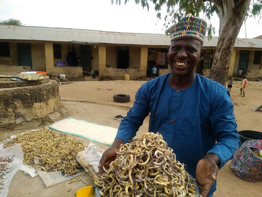 Babangida Sampling his Annual Harvest