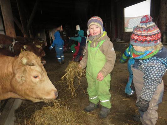 Ein Tag auf dem Bauernhof