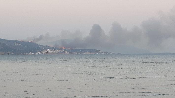 In 7 km Entfernung gibt es einen Waldbrand.