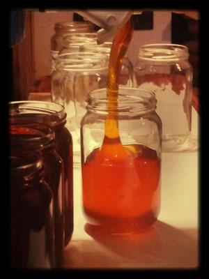 Mise en pot du miel