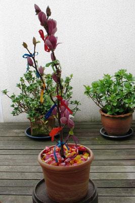 Unser Wunschbaum