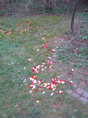 Blütenblätter am Boden wie Tränen in unserem Gesicht...