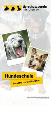 Rollup für die Hundeschule des Tierheim München 01/2016