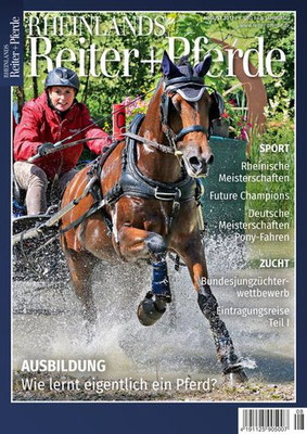 Rheinlands Reiter + Pferde 08/2017