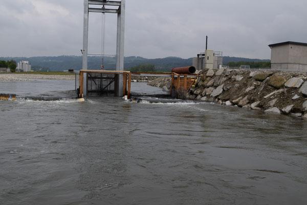 Reusenkonstruktion zum Ermitteln von den Fischwanderungen