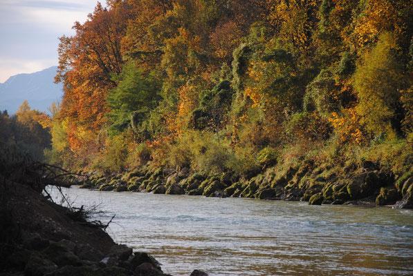 Herbststimmung an der Saalach