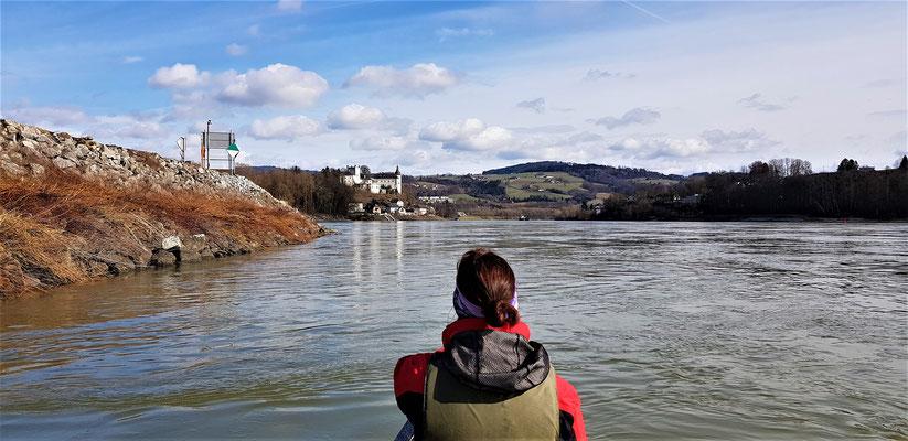 Kurz vor der Regattastrecke mit Blick auf Schloß Ottensheim