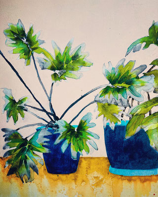 'Secret Life Of Plants' / mixed media on paper / size 38 cm x 28 cm / € 75,-
