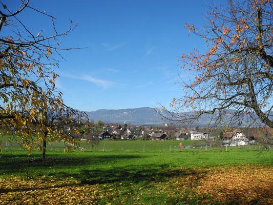 News Solothurner Wasseramt