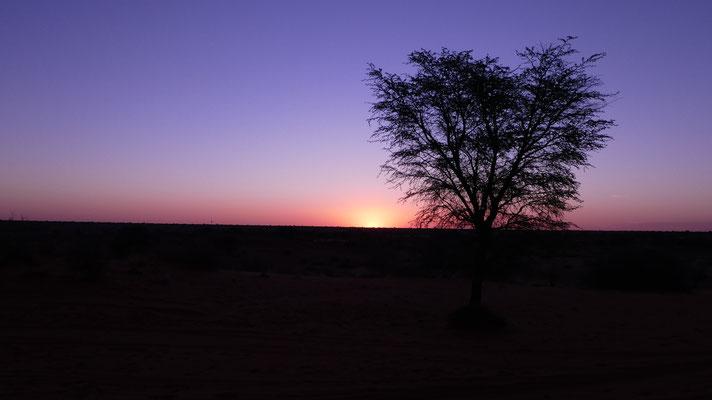 Sonnenuntergang, Nov. 2016