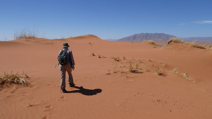 Unterwegs in der  Namib, Nov. 2016