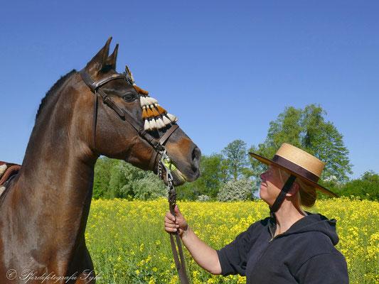 Pferdefotografie Syke Raps Barockpferd
