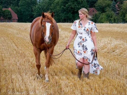 Pferdefotografie Syke Stoppelfeld