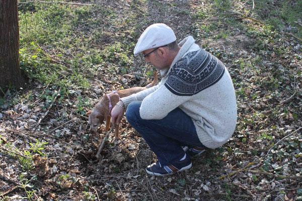 """FAY Elisa  """"Les chercheurs de truffes"""""""