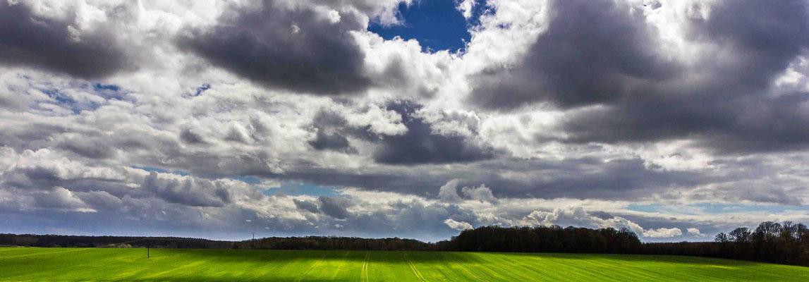 "Cynthia GERARD ""Agriculture en panorama, art en herbe"""