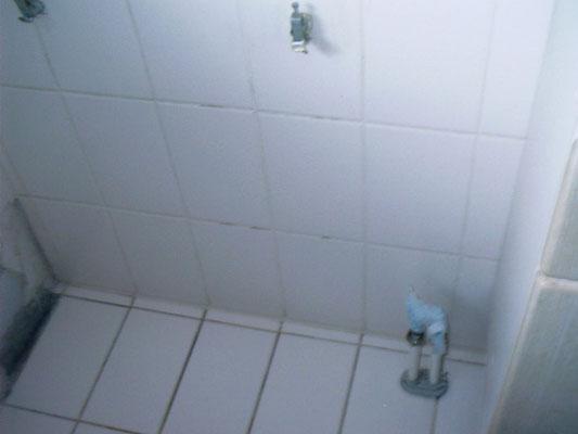 WC-Umbau 2012