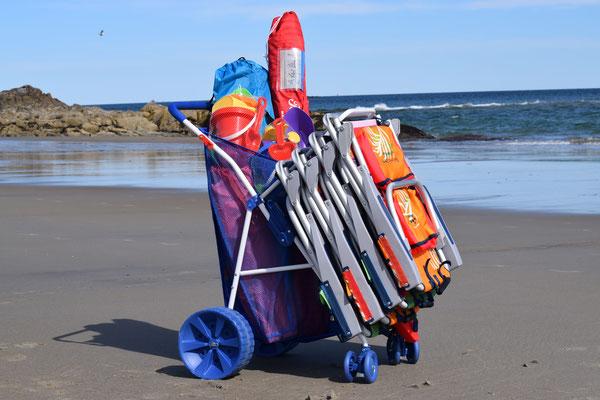 Beach Buggy