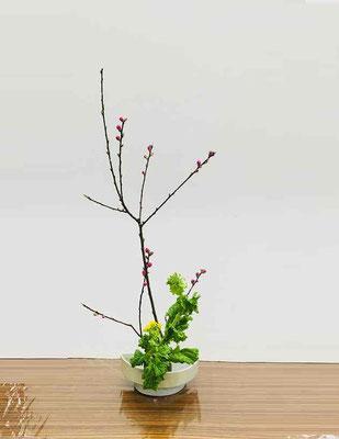 『本科・初等科』クラスで優秀花を受賞した作品です。 花型/たてるかたち 花材/桃 菜の花②