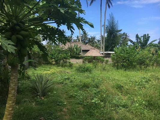 Lombok real estate for sale by owner