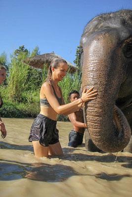 Elefanten baden von einer hübschen Touristin