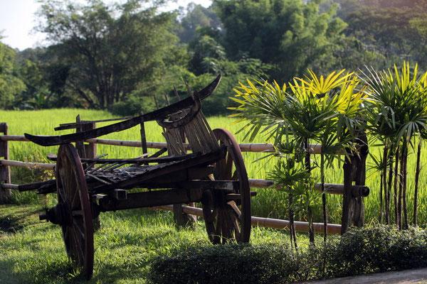 Dorf in Chiang Dao Nordthailand