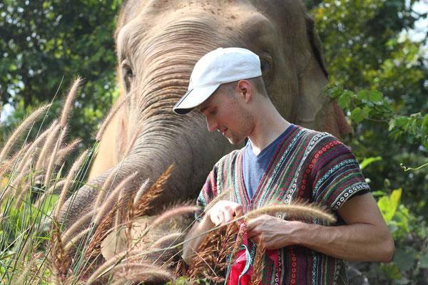 Elephant Nature Park Chiang Mai - Elefant und Tourist