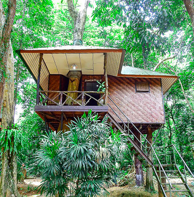 khao sok nature resort - Mountain View Baumhaus