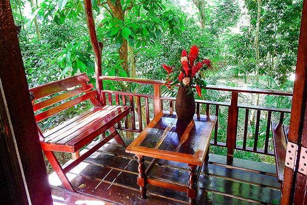 Terrasse vom Baumhaus. Sie sind mitten IM Dschungel!