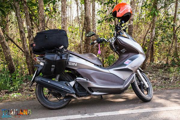 PCX 150 ccq Motorrad-Roller