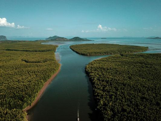 Mangroven auf Ko Lanta - Luftaufnahme