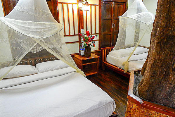 Zimmer-Betten vom Backpacker treehouse