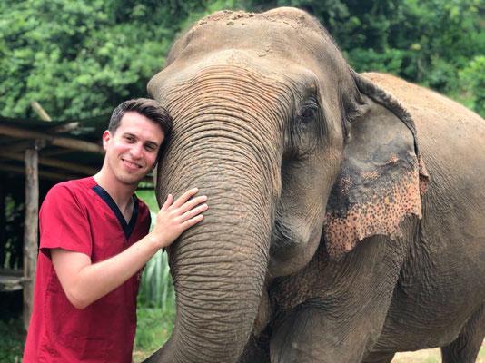 Elefanten umarmen macht jedem Spaß. Und vergessen Sie nicht ein Urlaubsbild von sich machen zu lassen.