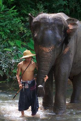 Mahout und sein Elefant