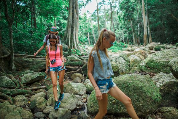 Trekking tour durch den thailändischen Dschungel