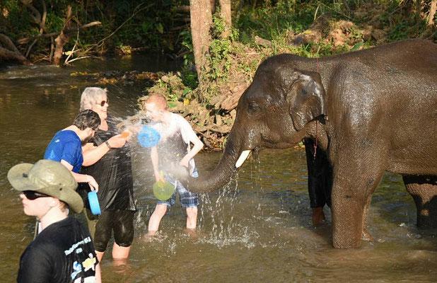 Während der Rundreise im Nature Elephant Camp