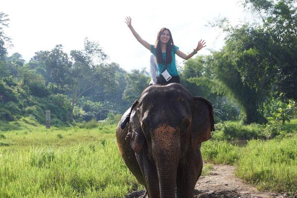 Elefanten reiten zum Fluss um dann baden zu gehen.