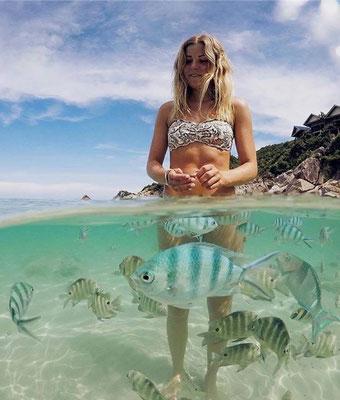 Koh Lipe Castaway Resort - Touristin verzückt von den Fischen, wovon es auf Koh Lipe noch viel mehr zu bestaunen gibt.