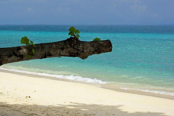 Strand Koh Hai