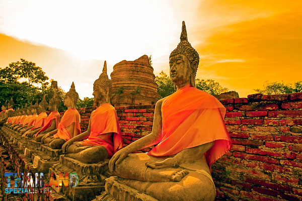Buddha-Statuen in Ayutthaya - wo auch unser Reisebüro der Thailand-Spezialisten Ihren Haupt-Firmensitz hat